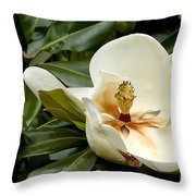 Creamy Magnolia Throw Pillow