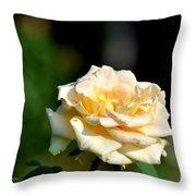 Creamy Sunlight Throw Pillow
