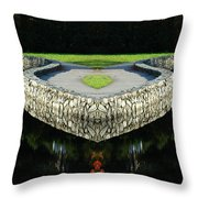 Creation 10 Throw Pillow