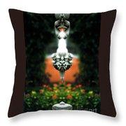 Creation 202 Throw Pillow