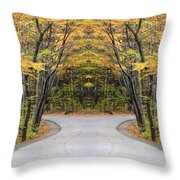 Creation 21 Throw Pillow