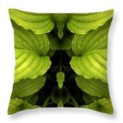 Creation 65 Throw Pillow