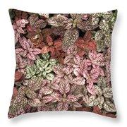 Creative Hues Of Mother Nature Throw Pillow