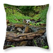 Creek End Throw Pillow