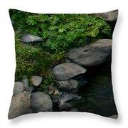 Creek Flow Panel 2 Throw Pillow