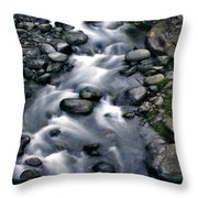 Creek Flow Panel 3 Throw Pillow