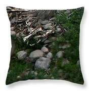 Creek Flow Panel 4 Throw Pillow