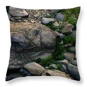 Creek Flow Panel 5 Throw Pillow
