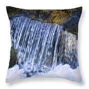 Creek In Mount Rainier National Park Throw Pillow