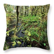 Creek In The Rain Forest Throw Pillow