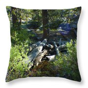 Creek In White Wolf Throw Pillow