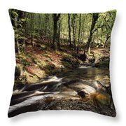 Creek In Woods, Cloughleagh, County Throw Pillow