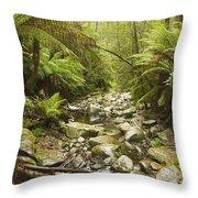 Creek Running Through The Rainforest Throw Pillow