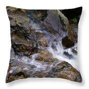 Creek Scene On Mt Tamalpais Throw Pillow