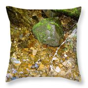 Creek Stones Throw Pillow