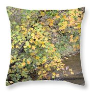 Creekside Gold 2012 Throw Pillow