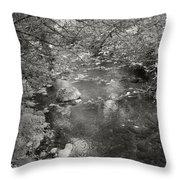 Creekside Throw Pillow