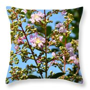 Crepe Mertle In Bloom Throw Pillow