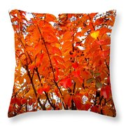 Crepe Myrtle Leaves In Autumn Throw Pillow