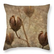 Crepe Myrtle Seed Pods With Grunge And Textures Throw Pillow