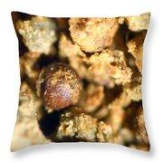 Cretaceous Meteorite Throw Pillow