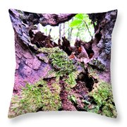 Crevis Throw Pillow