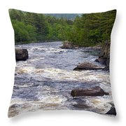 Cribworks 3 Throw Pillow