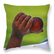 Cricket Anyone Throw Pillow
