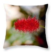 Crimson Bottle Brush Throw Pillow