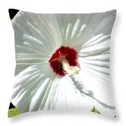 Crimson Stained Throw Pillow