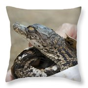Crocodile And Alligator Breeding Farm  Throw Pillow