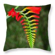 Crocosmia - Lucifer Plant Throw Pillow
