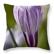 Crocus Blossom Throw Pillow