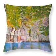 Crooked Creek 1 Throw Pillow
