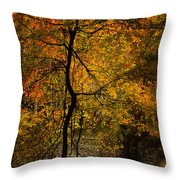 Crooked Tree At Beaver's Bend Throw Pillow