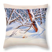 Cross Country Throw Pillow
