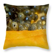 Cross Section Of A Cut Papaya With The Fruit And The Seeds Throw Pillow