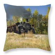 Crossing Hermosa Creek Throw Pillow