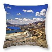 Crossing The Andes 2 Throw Pillow