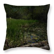 Crossing The Bog Throw Pillow