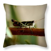 Crossing The Ravine Throw Pillow