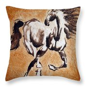 Crossraods Throw Pillow
