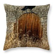 Crow On Old Wooden Grave Throw Pillow