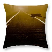 Crow With Mouse Throw Pillow