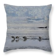 Crowded Shore Throw Pillow