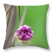 Crumpled Yet Beautiful Throw Pillow