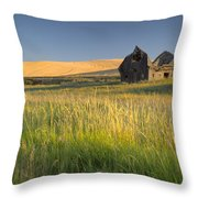 Crushed By Time Throw Pillow