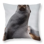 Crying In The Wilderness Throw Pillow