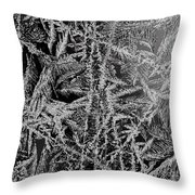 Crystal 13 Throw Pillow