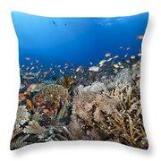 Crystal Bay Panorama Throw Pillow